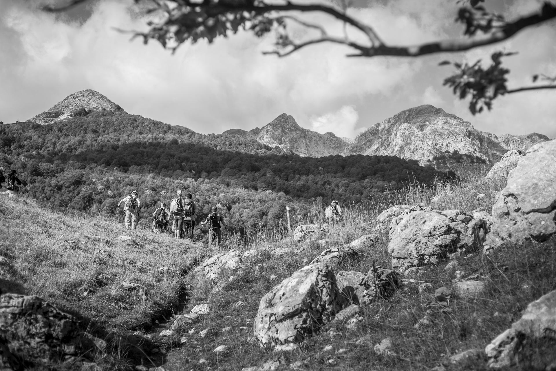 Sulle orme del cervo – Ripartono le avventure degli Hikers Adventures