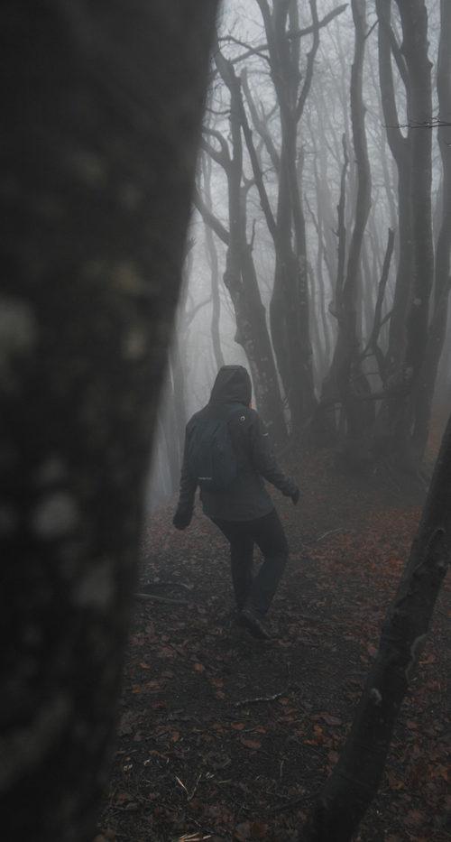 partenio-hikers
